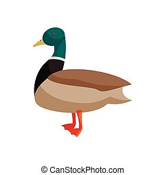 Duck icon, cartoon style - Duck icon in cartoon style...