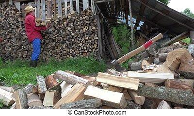 Garden worker man guy stack chopped firewood near woodshed....