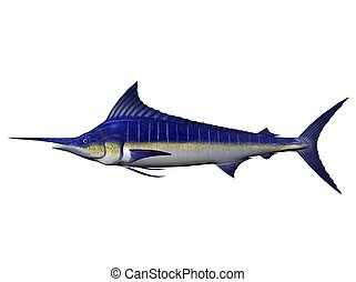 Marlin - a marlin, rendered with Bryce 6
