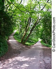 Paths - multiple choices, choose a path