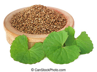 Ajwain seeds with thankuni leaves - Medicinal combination of...