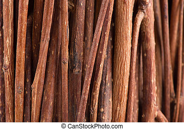 Tree Branches (Brushwood) Macro Background - A macro shot of...