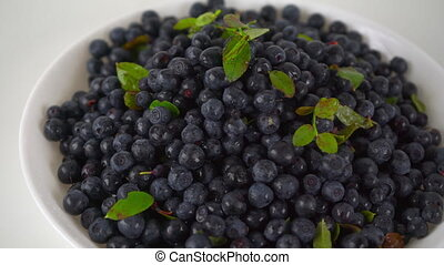 Pile of wet bilberries with leaves on a plate 4K close up...