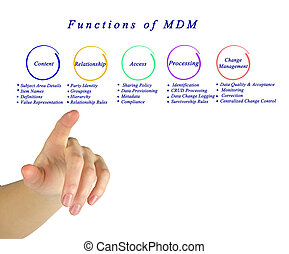 Functions of master data management