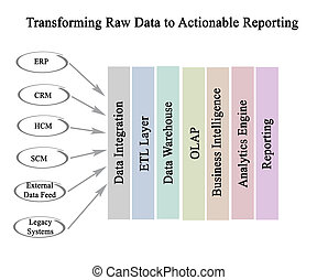 Transform Raw Data to Actionable Reporting
