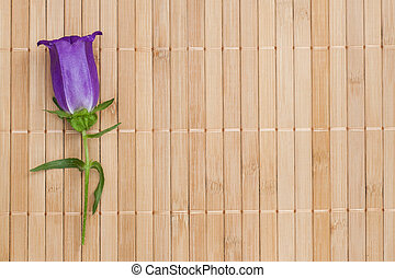 Ultramarine colored bellflower on beige bamboo napkin,...