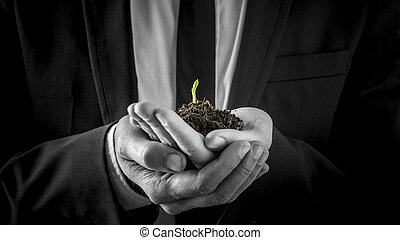 Businessman holding a germinating plant sprouting its first...