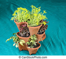Stack of plants in pots