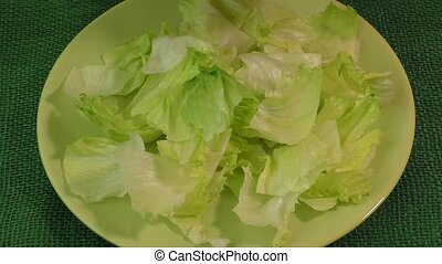 Green leaf lettuce on the plate