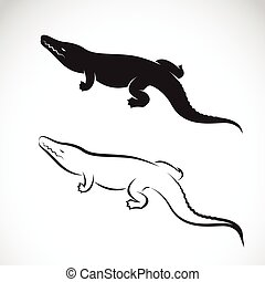 Vector of crocodile design on white background Vector...
