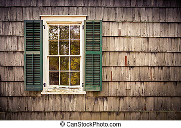 Window Wood Siding - French pane window with green shutters...