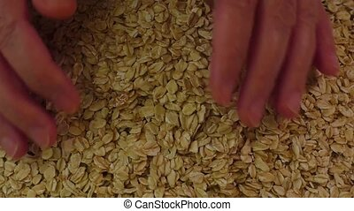 Oat flakes background, top view