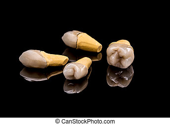 Prosthetic teeth on black background