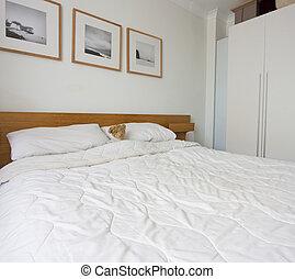 single teddy bear in bed