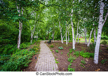 Walkway at Bass Island Park, in Manchester, New Hampshire.