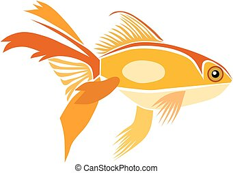Goldfish, isolated vector