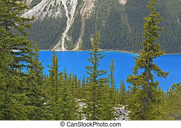 Peyto Lake - Beautiful Peyto Lake, Banff National Park,...