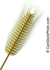 Ear of Wheat Vector - Vector illustration of a wheat ear.