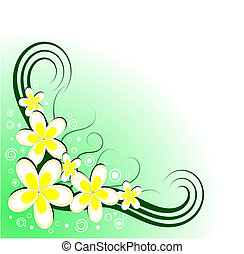 Frangipani Floral Decoration Vector - Vector illustration of...