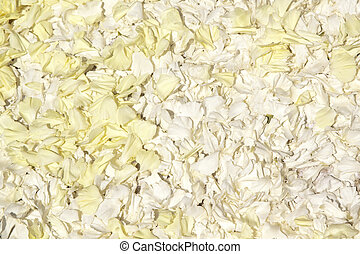 White petals quater - White petals with some yellow. Usable...