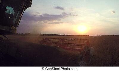 Combine harvester close up. Combine harvester harvesting wheat. Grain harvesting combine. Combine harvesting wheat. Wheat field. Close-up view of combine.