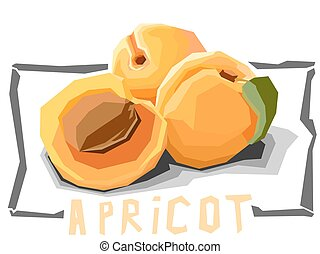 Illustration of fruit apricots - Vector simple illustration...