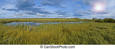 Small pond and swamp | Panorama - Panoramic shot of the...