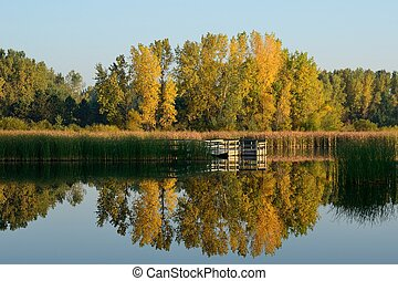 Autumn Colors Reflected on a Lake with a Fishing Dock