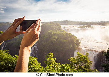 girl taking a photo with smartphone - girl taking a photo of...