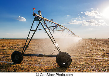 Agricultural irrigation on harvested wheat stubble field in...