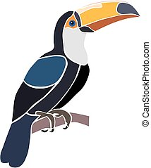 Toucan bird, isolated vector