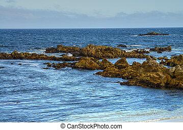 Asilomar State Marine Reserve - Rock breakers Asilomar State...