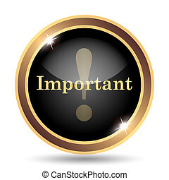 Important icon Internet button on white background