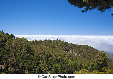 Inland Central Gran Canaria, Las Cumbres, highest areas of...