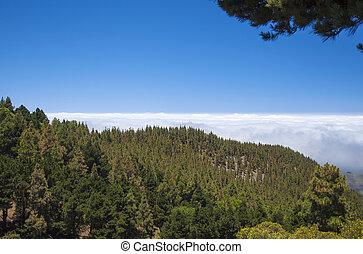 Inland Central Gran Canaria, Las Cumbres, highest areas of...