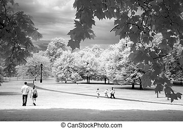 Hyde Park in London, UK