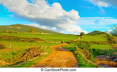 dirt road in a green valley