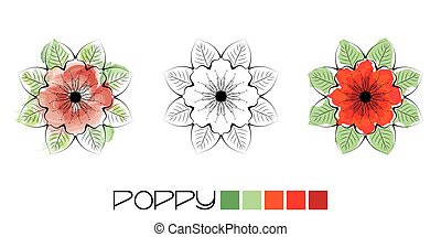 Poppy colouring