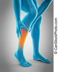 pain in the calf