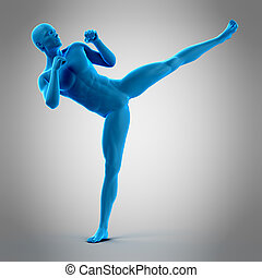 a kick boxing pose - medically accurate 3d illustration of a...