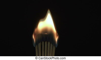 Burning match in the dark. Slow Motion