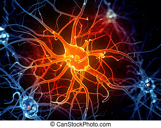 an active nerve cell