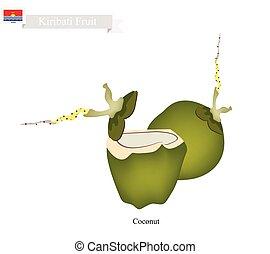 Fresh Coconut, A Famous Fruit in Kiribati - Kiribati Fruit,...
