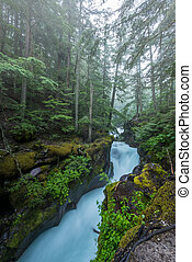 Water Rushes through the Carved Stone of Avalanche Creek...