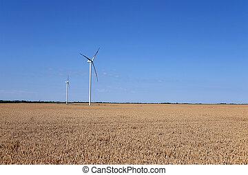 wind turbines on wheat field landscape