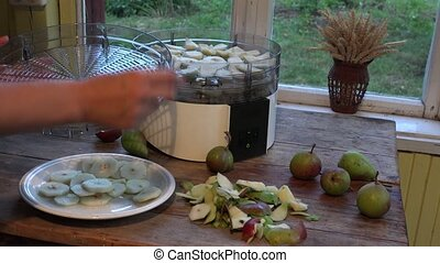 female hands put sliced pears in fruit dryer machine dish....