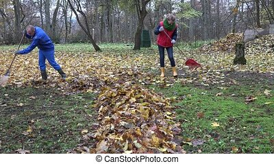 Family man and woman rake leaves together in backyard. 4K