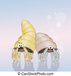 hermit crabs - illustration of hermit crabs