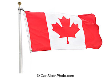 Canadian Flag - Flag of Canada Isolated on a White...