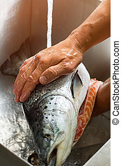 Male hands wash big fish Water flowing onto a fish Almost...